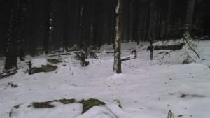 une belle couche de neige sur les hauteurs