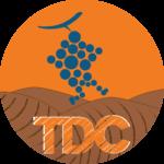 logo_TDC-01